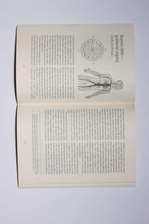 Drahé kameny a orgánové hodiny / Michael Gienger č.2