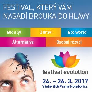 Festival EVOLUTION 2017