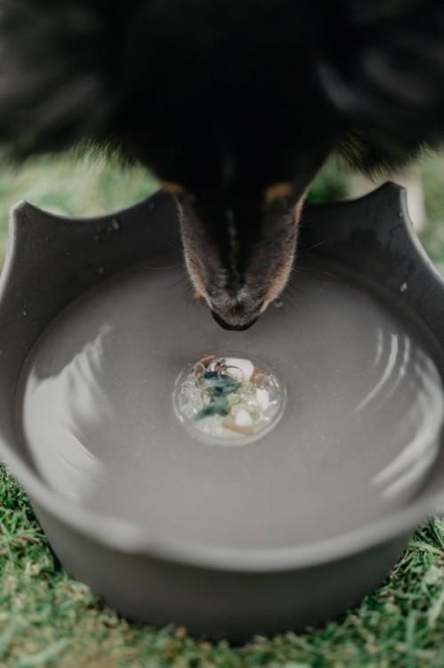 CrownJuwel pro domácí zvířata - břidlicově šedá č.4